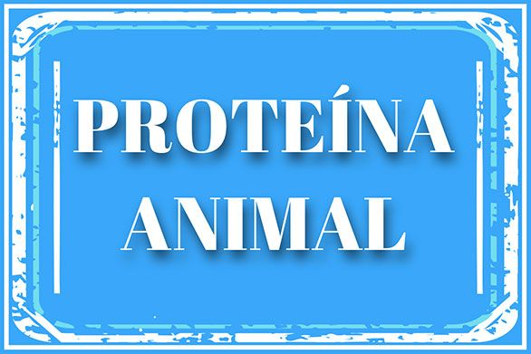 Proteína animal de ternera