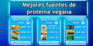 9 Mejores fuentes de proteína vegana