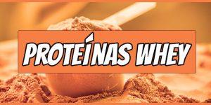 Las 10 Mejores proteínas Whey