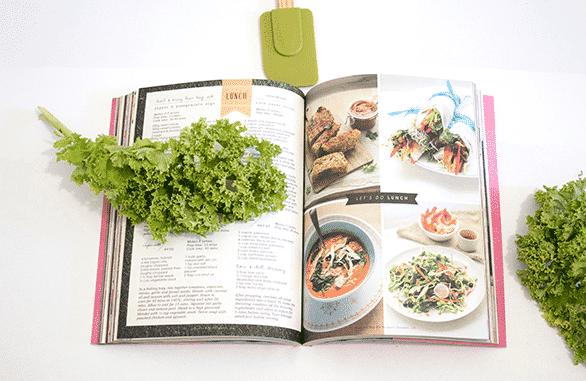 recetas-ricas-en-proteínas-origen