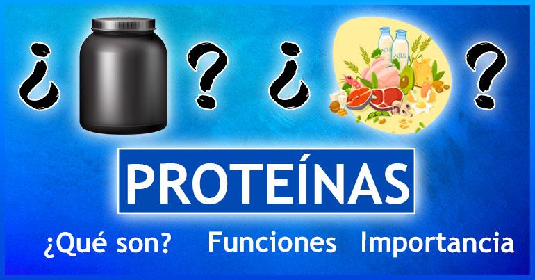Blog-sobre-proteínas