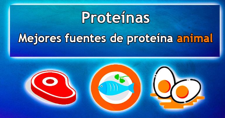 Mejores fuentes de proteína animal